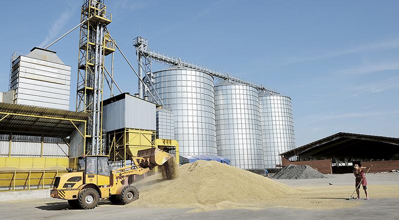 26 июня в СПК «Федорский» на уборку зерновых в поле вышли первые комбайны