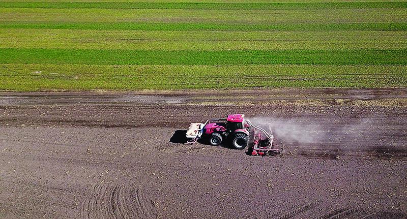 На Столинщине весеннюю посевную кампанию закончили 12 хозяйств района из 17