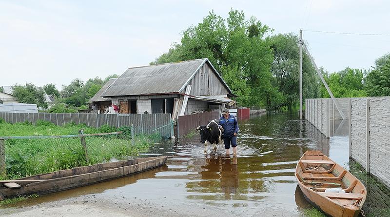 Фоторепортаж: на Столинщине уровень воды достиг максимума и начал снижаться