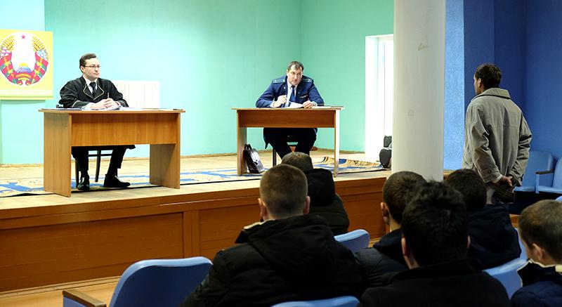 Житель д. Ольгомель  получил 1 месяц ареста за украденный плуг