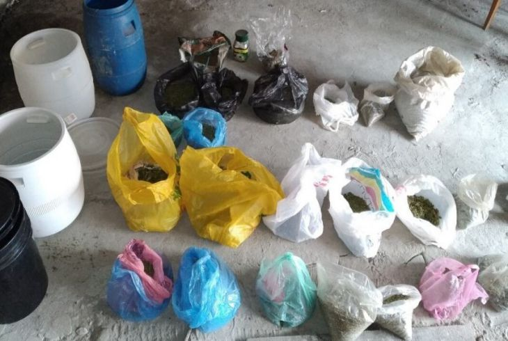 В Микашевичах в подвале многоквартирного дома милиция изъяла 8,5 кг марихуаны