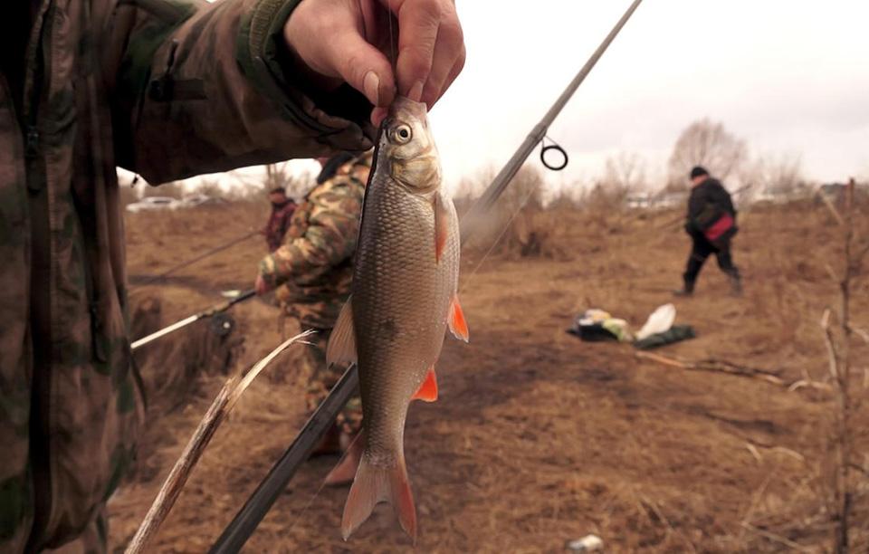 Ущерб в 4 000 рублей причинили 3 жителей района, рыбача на Припяти